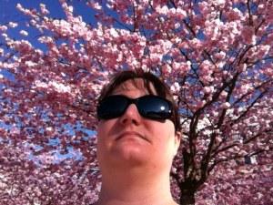 Japanska körsbärsträd i Hammarby Sjöstad och jag